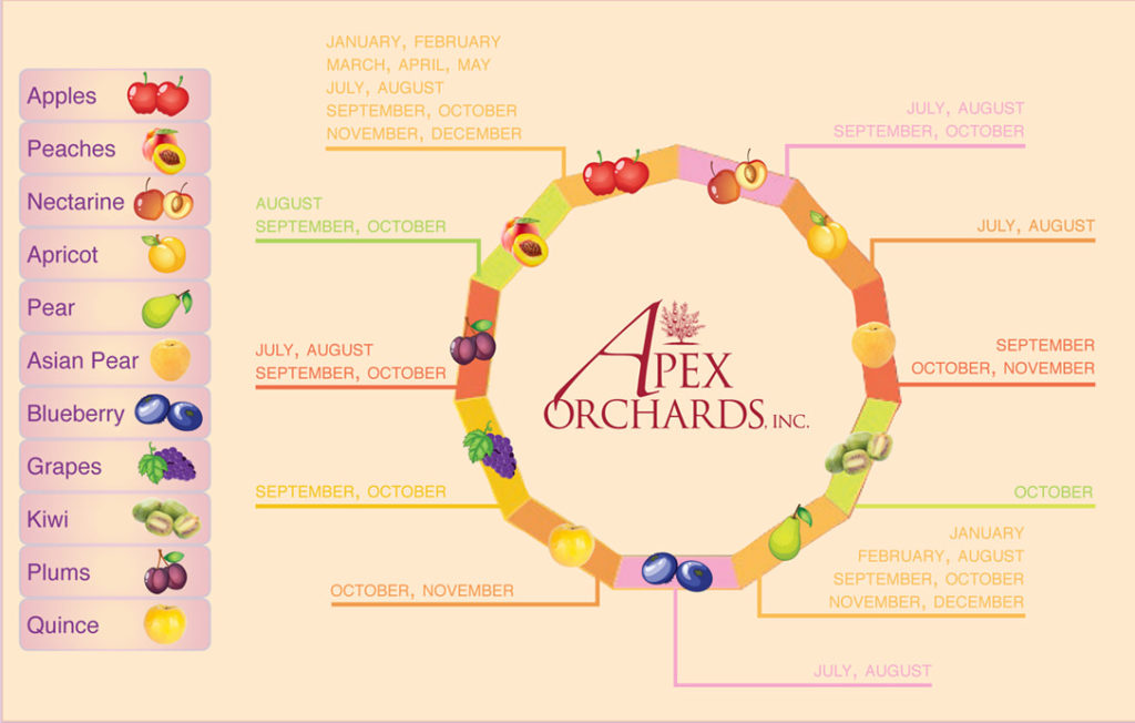 Apex Orchard Fruit Infographic