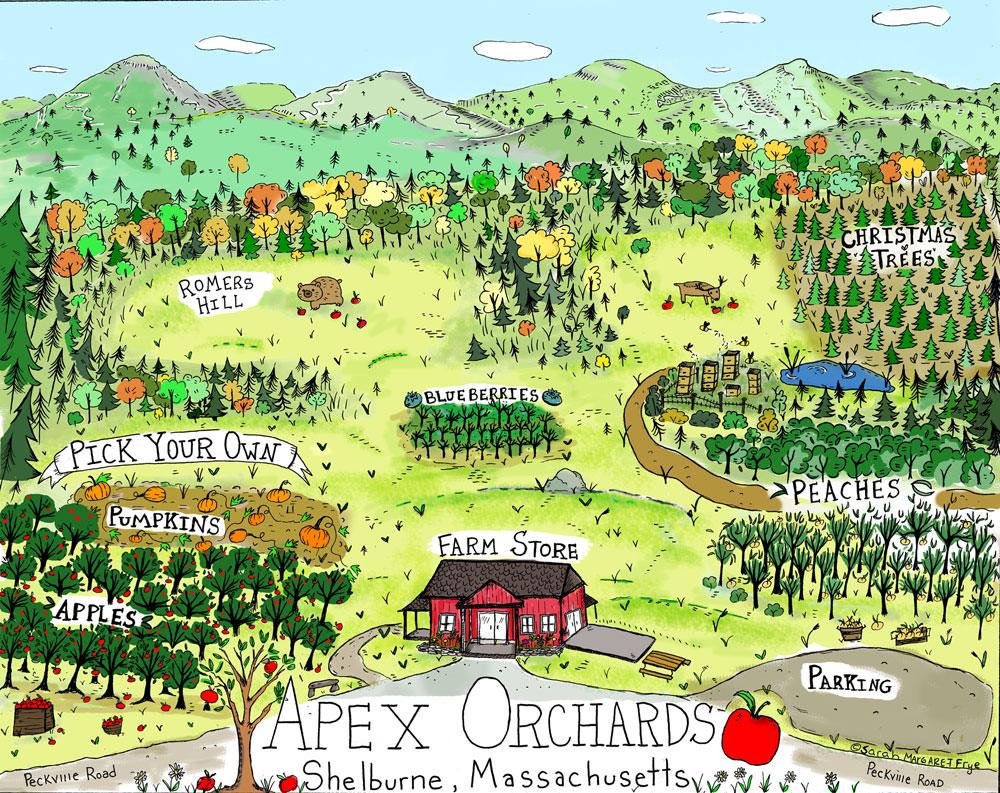 Apex-Orchard-Farm