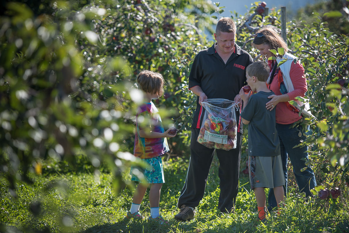 Apex Orchard