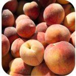 product fruit